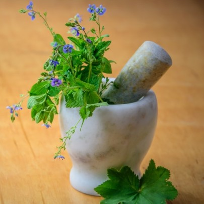Searching for Drugs in Culinary Herbs with the Help of Chromatography